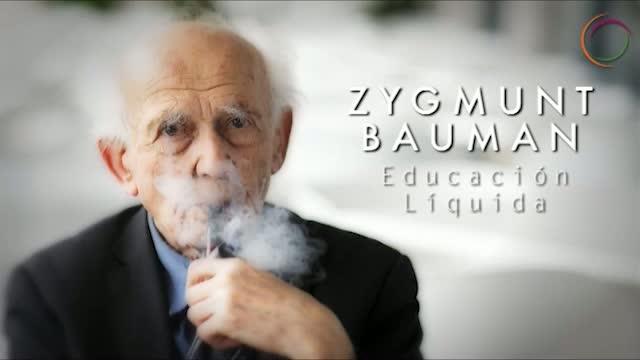 Modernidad liquidia bauman analysis essay